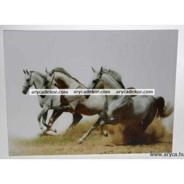Falikép 30x30 cm
