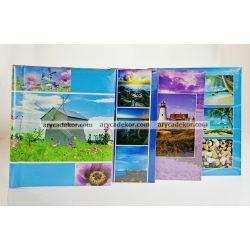 Album SA20 P1801