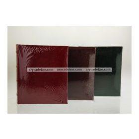 Berakható képek száma: 10x15 cm 100 db